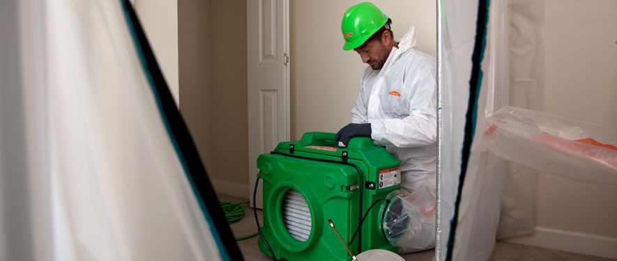 Green Bay, WI mold cleanup