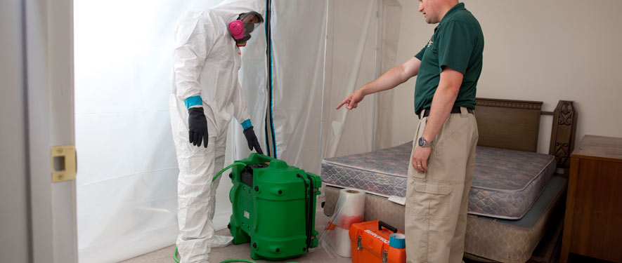 Green Bay, WI mold removal process